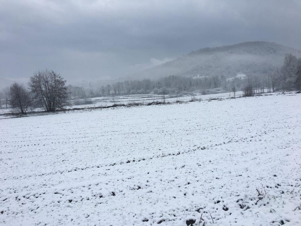nieve olot