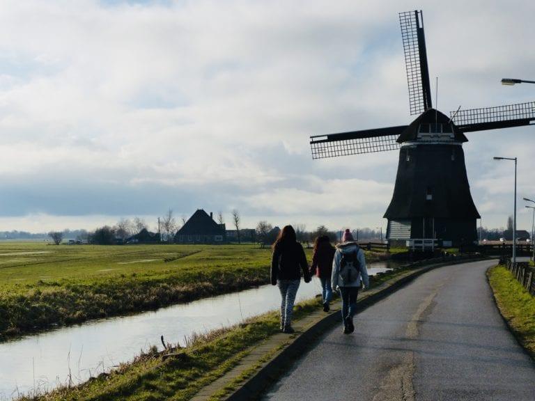 Molinos en Amsterdam