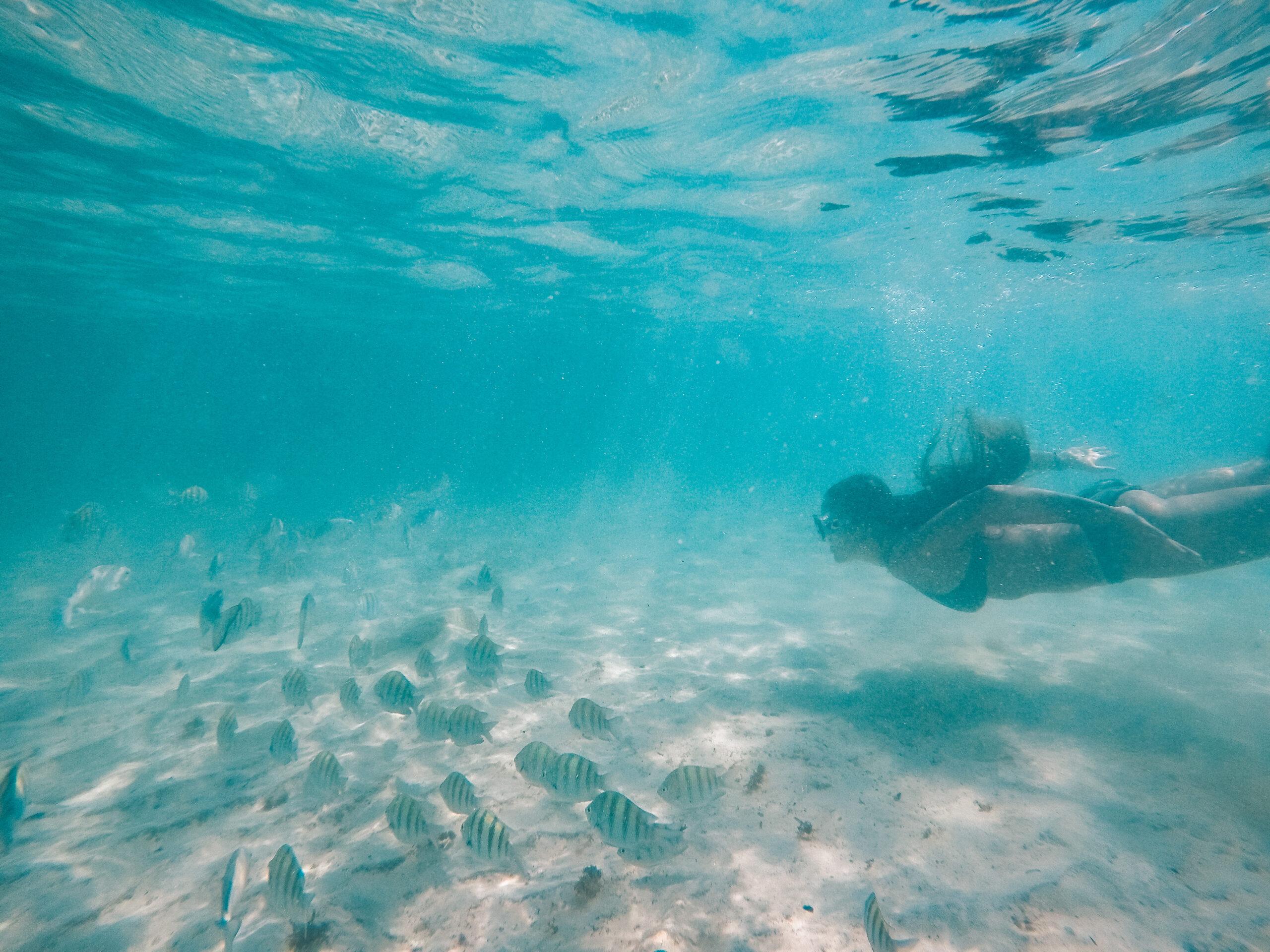 Punta Norte Isla Mujeres