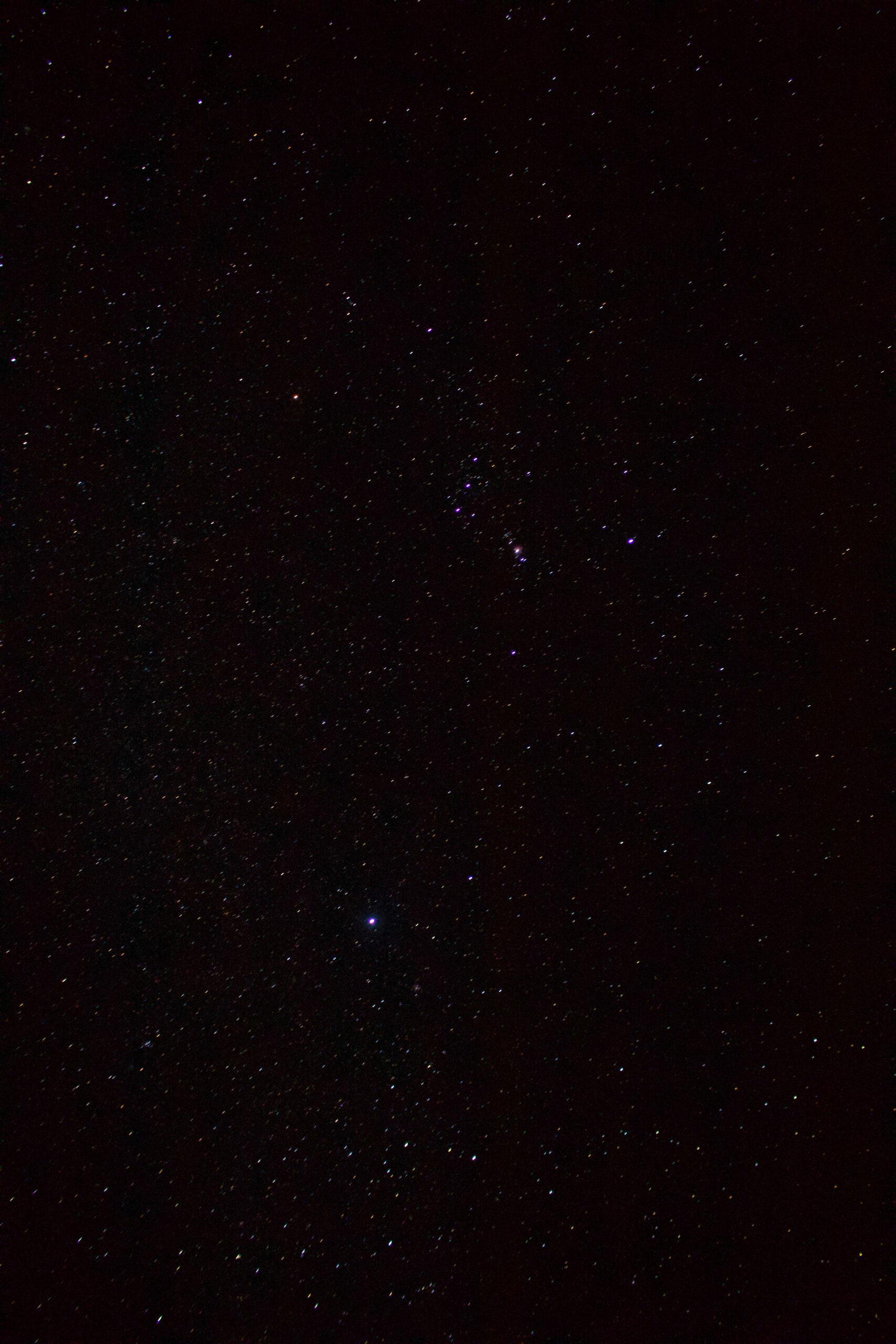 estrellas holbox